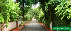 property in thrissur