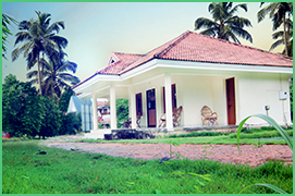 luxury villas & apartments
