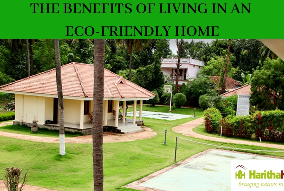 Eco-friendly projects in Tcr